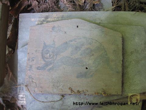 201208neko_021