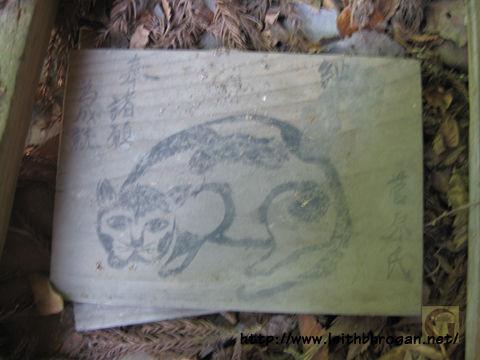201208neko_042