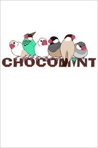 chokomint_iphone_11