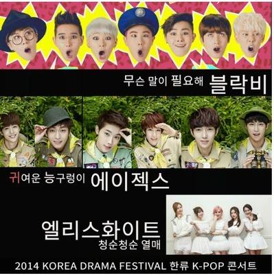 韓流K-POPコンサート Block.B チケット 代行