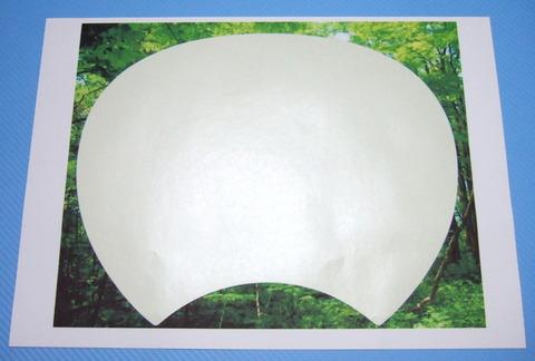 DSCF4456