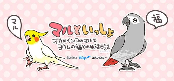 kanmiq.blog.jp