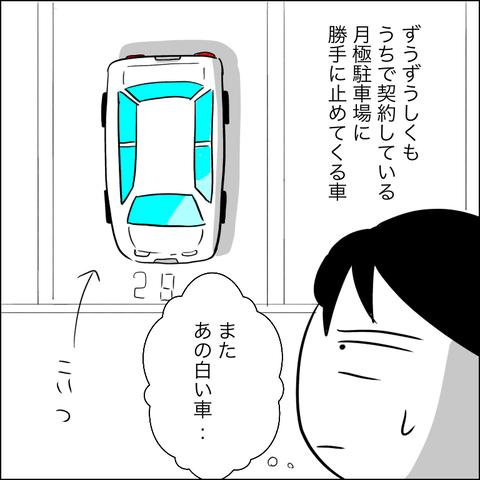 031cc6e4-s