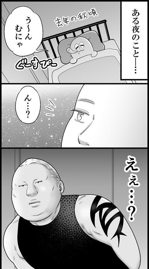 3b6217e6-s