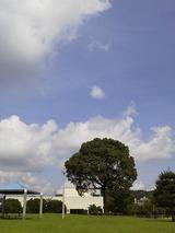 夏の雲0726 (1)
