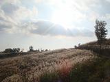 押戸岩の丘 (1)