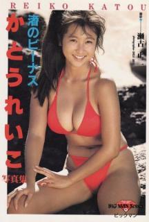 平成最強グラドル人気投票。小池栄子、かとうれいこ、1位は?