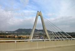 11年かけ完成した韓国のモノレール、わずか1日で止まる