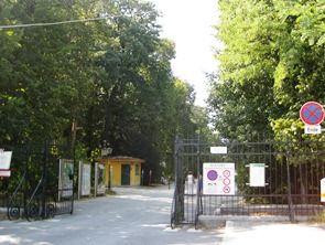 2011-08-25 ウィーン夏期講習会 182a
