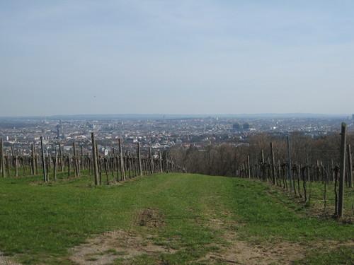 ウィーン2010年3月 356