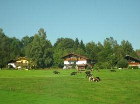 2011-08-25 ウィーン夏期講習会 302a