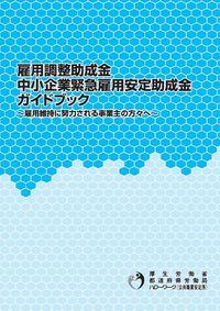 雇調金・中安金ガイドブック(平成22年4月版)