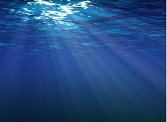 深海の底に光は差さない