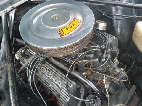 IMGP0248