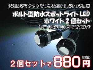 ボルト型LED2個セット白1