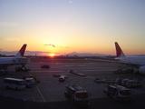 JALと富士山