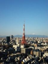 朝の東京タワー