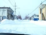 旭川 積雪2