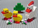 [#10169] Chicken & Chicks