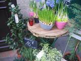 パリの花屋 2