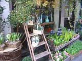 パリの花屋 1