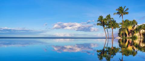 1036858_Hawaii-Crop_1536x647
