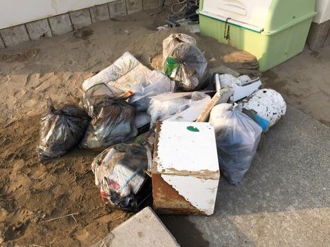 実践レポ:海岸清掃(02月)の様子
