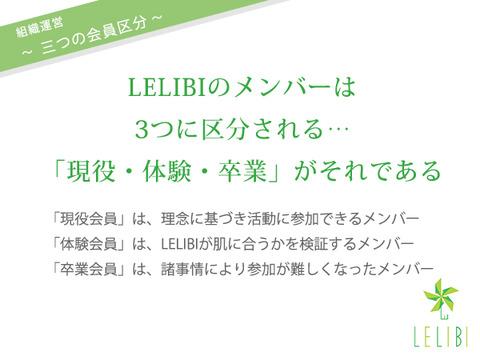 LELIBI組織運営:三つの会員区分