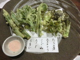 山菜天ぷら