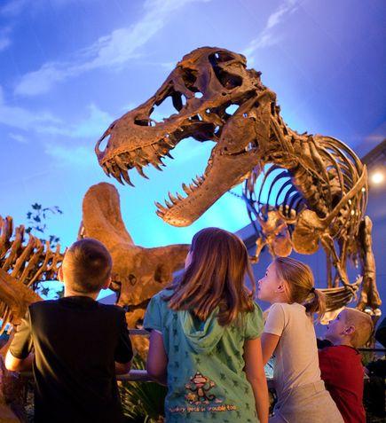 tyrannosaurus-rex-maybe-man-sized_26116_big