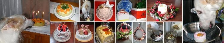 ★誕生日にはケーキ。もう食べていい?H700
