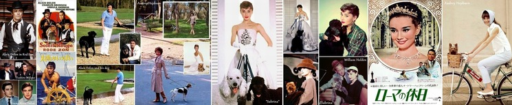 ■Alain Delon, Audrey Hepburn 01-H700