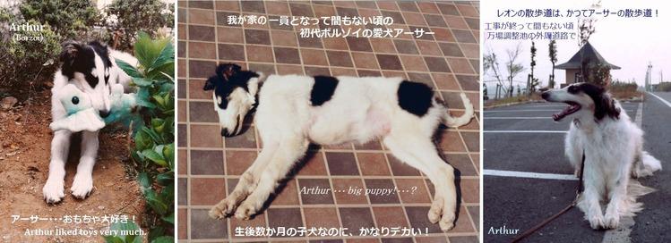 *アーサー 001 H750