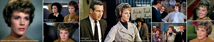 ※TORN CURTAIN Julie_Andrews_Paul Newman H700