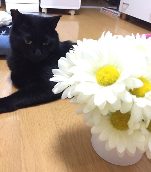 お花とツーショット