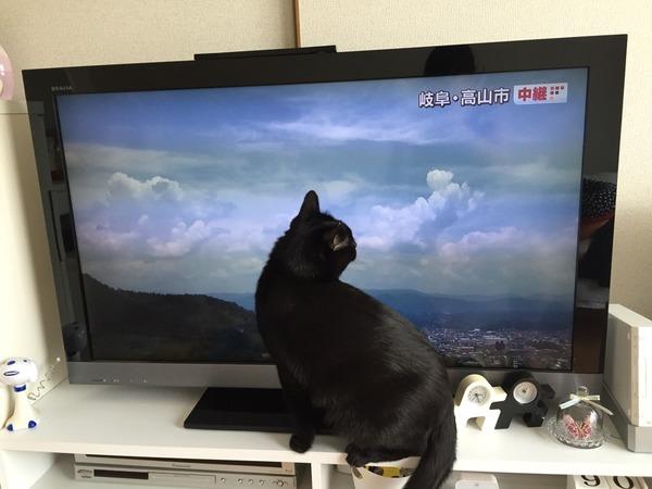 雲って美味しい?
