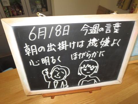IMG_1651