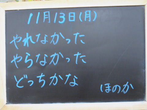 IMG_0809