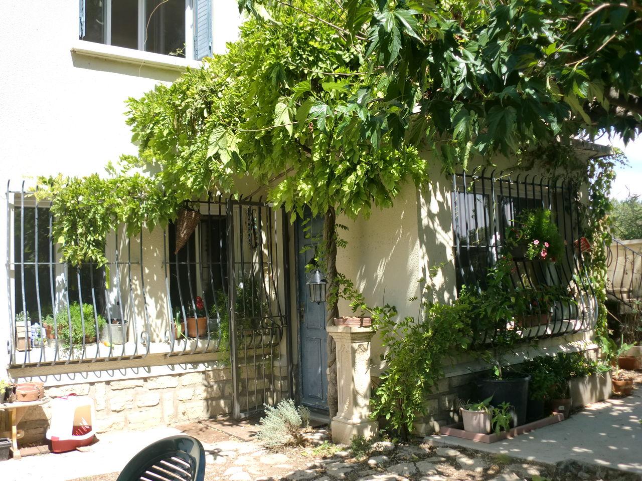 カルパントラ : Provence暮らし