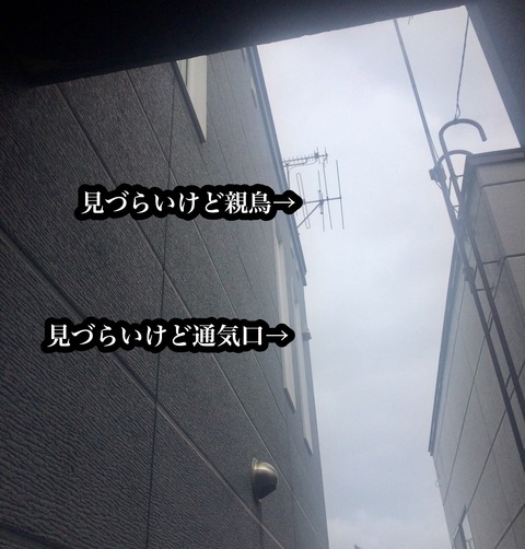 129A79BF-A886-4374-A5CB-265D6CDC59CF