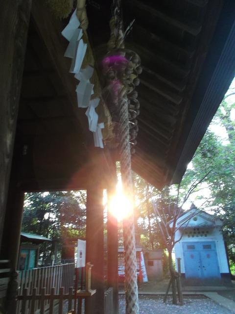 氷川神社さま