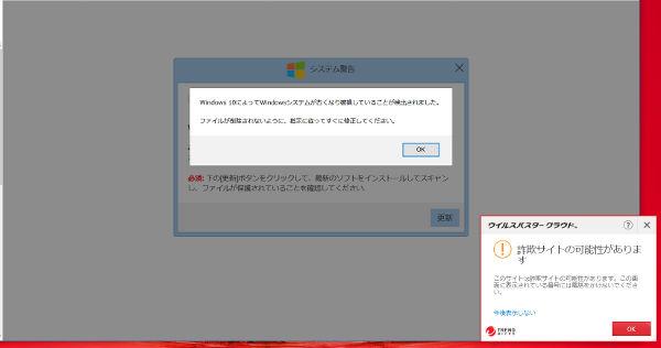 偽サイト(windows)_8