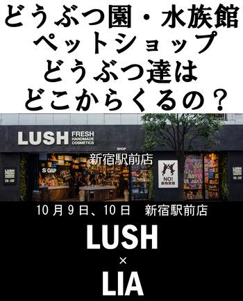 2018-10-04-新宿駅前