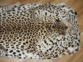 豹の毛皮1