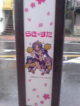 85a2d561.jpg