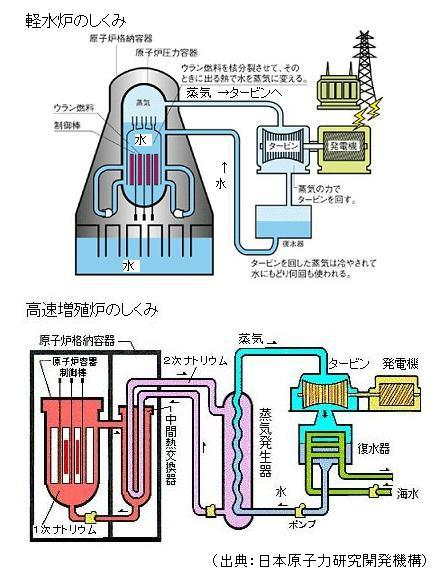 原子力」の近未来「大型軽水炉」と「高速増殖炉」とは何か ...