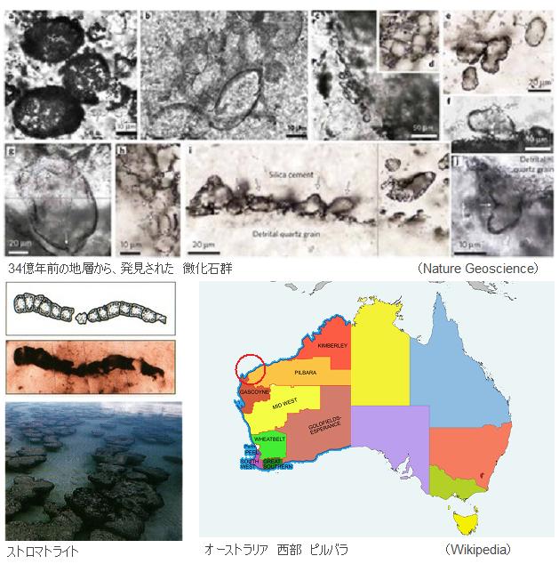 Pilbara region