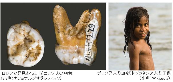 Denisova hominin