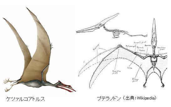 名古屋市科学館「世界最大の翼竜...