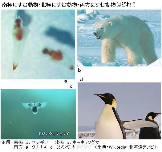 と 北極 南極
